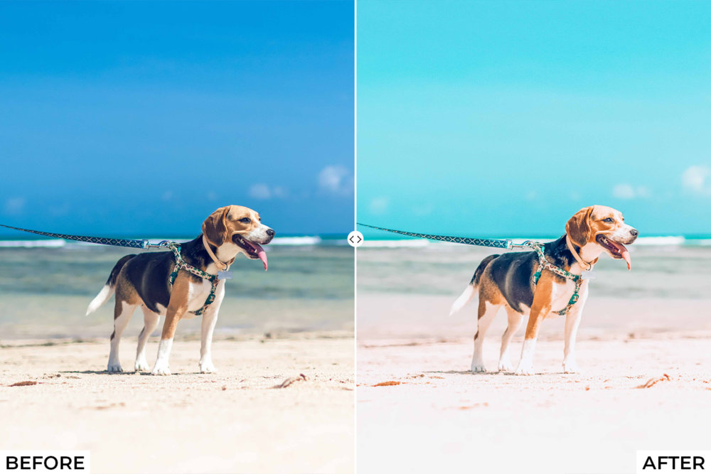 101 All in one Lightroom presets