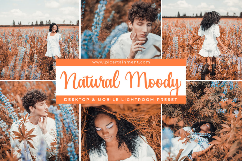 Natural Moody Lightroom Presets