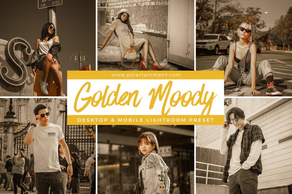 Golden Moody Lightroom Presets
